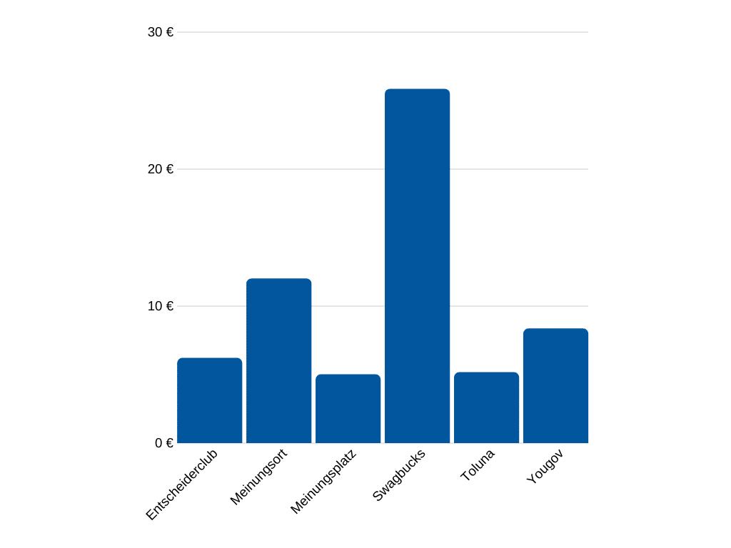 Umfrageportal Test - Verdientes Geld